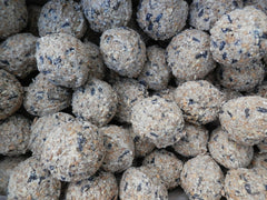 Bird Fat Balls & Suet Products