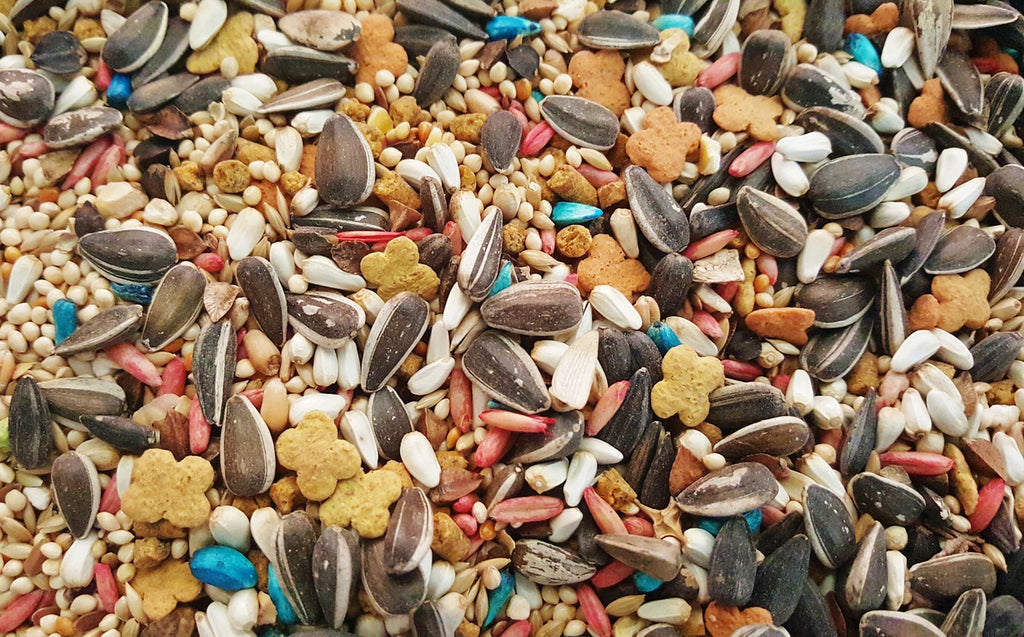 mixed bird seed guide