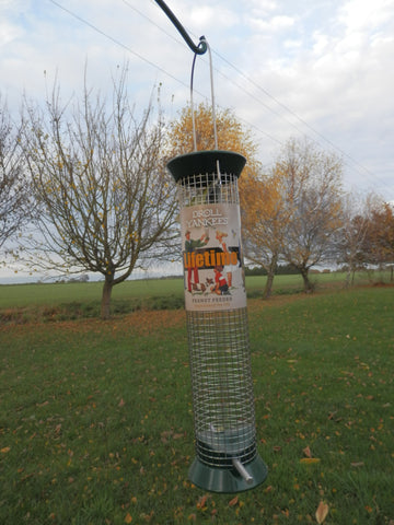bird nut feeder droll yankee