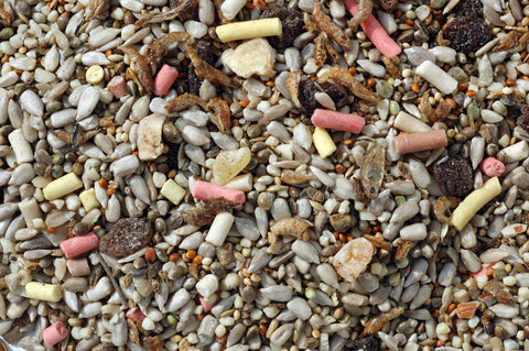 Blended insect mix for birds