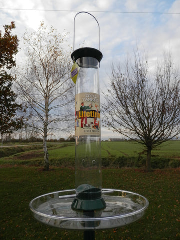 Bird niger seed feeder Droll yankee lifetime