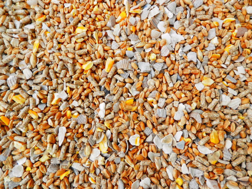 Blended poultry feed for chickens