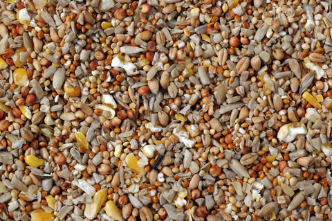 Superior Economy Wild Bird Mixed Seed
