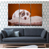 Adorable Pit Bull Puppy-Medium-Not Framed-Cool Tees & Things
