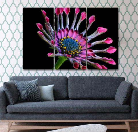 African Daisy-Wallart 3 Piece Vertical Rectangle 2-Medium - Not framed-Cool Tees & Things