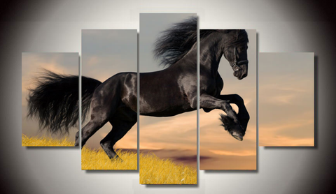 Black Stallion Canvas - Cool Tees and Things