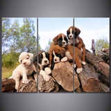Boxer Puppies-Medium-Not Framed-Cool Tees & Things