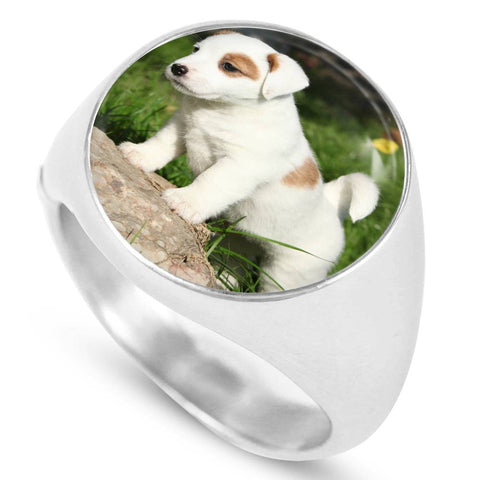 Cute Jack Russell Puppy Luxury Ring - Cool Tees and Things