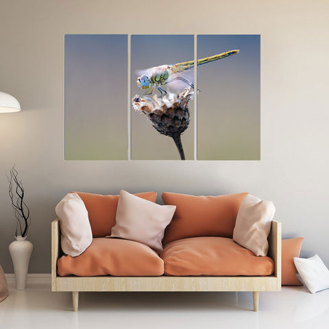 Dragonfly Canvas Print Wall Art Mural-Wallart 3 Piece Vertical Rectangle-Medium - Not framed-Blue-Yellow-Green-Cool Tees & Things