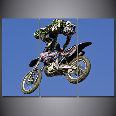 Freestyle Motocross Trick-Wallart 3 Piece Vertical Rectangle-Medium - Not framed-Blue/Green/Red/Pink/White/Black-Cool Tees & Things