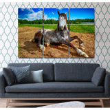 Horse Striking A Pose-Wallart 3 Piece Vertical Rectangle-Medium - Not framed-Bandicoot/Ivory-Cool Tees & Things