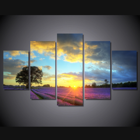 Lavender Field Sunset-Medium-Not Framed-Cool Tees & Things
