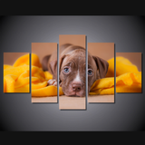 Loveable Pit Bull Puppy-Medium-Not Framed-Cool Tees & Things