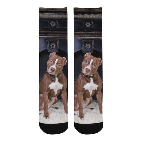 Loyal Pit Bull Socks - Cool Tees and Things