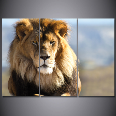 Majestic Lion-Wallart 3 Piece Vertical Rectangle-Medium - No frame-Blonde/Brown-Cool Tees & Things