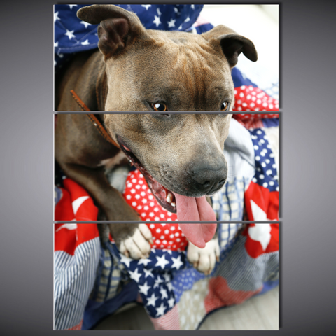 Patriotic Pit Bull - Cool Tees and Things