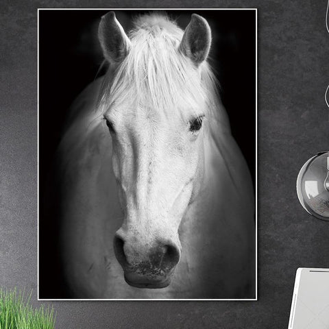 Stunning Animal Canvas Prints- Not Framed Home Decor-20X30cmX1PC no frame-White-Cool Tees & Things