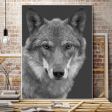 Stunning Animal Canvas Prints- Not Framed Home Decor-20X30cmX1PC no frame-DarkGray-Cool Tees & Things