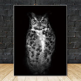 Stunning Animal Canvas Prints- Not Framed Home Decor-20X30cmX1PC no frame-Gainsboro-Cool Tees & Things