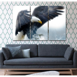 Stunning Bald Eagle - Cool Tees and Things