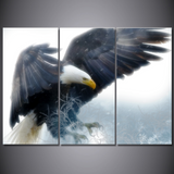 Stunning Bald Eagle-Wallart 3 Piece Vertical Rectangle-Medium - Not framed-White/Yellow/Brown/Grey-Cool Tees & Things