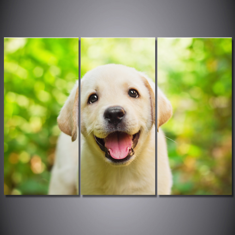 Yellow Lab Puppy-Medium-Not Framed-Cool Tees & Things