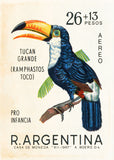 Argentina Tropical Toucan Bird postage stamp art print