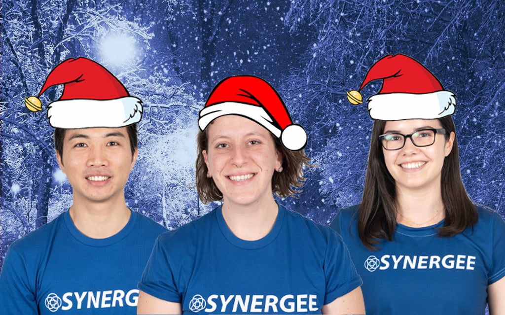 HOW TO STAY IN SHAPE OVER THE HOLIDAYS: Tips from the Synergee Team