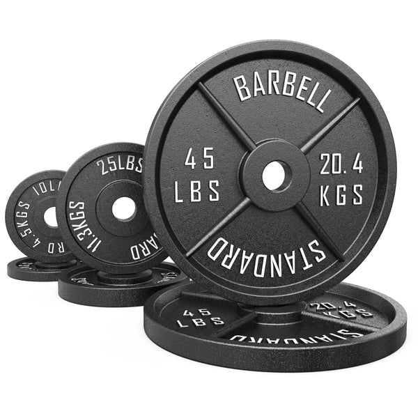 Synergee Standard Metal Weight Plates