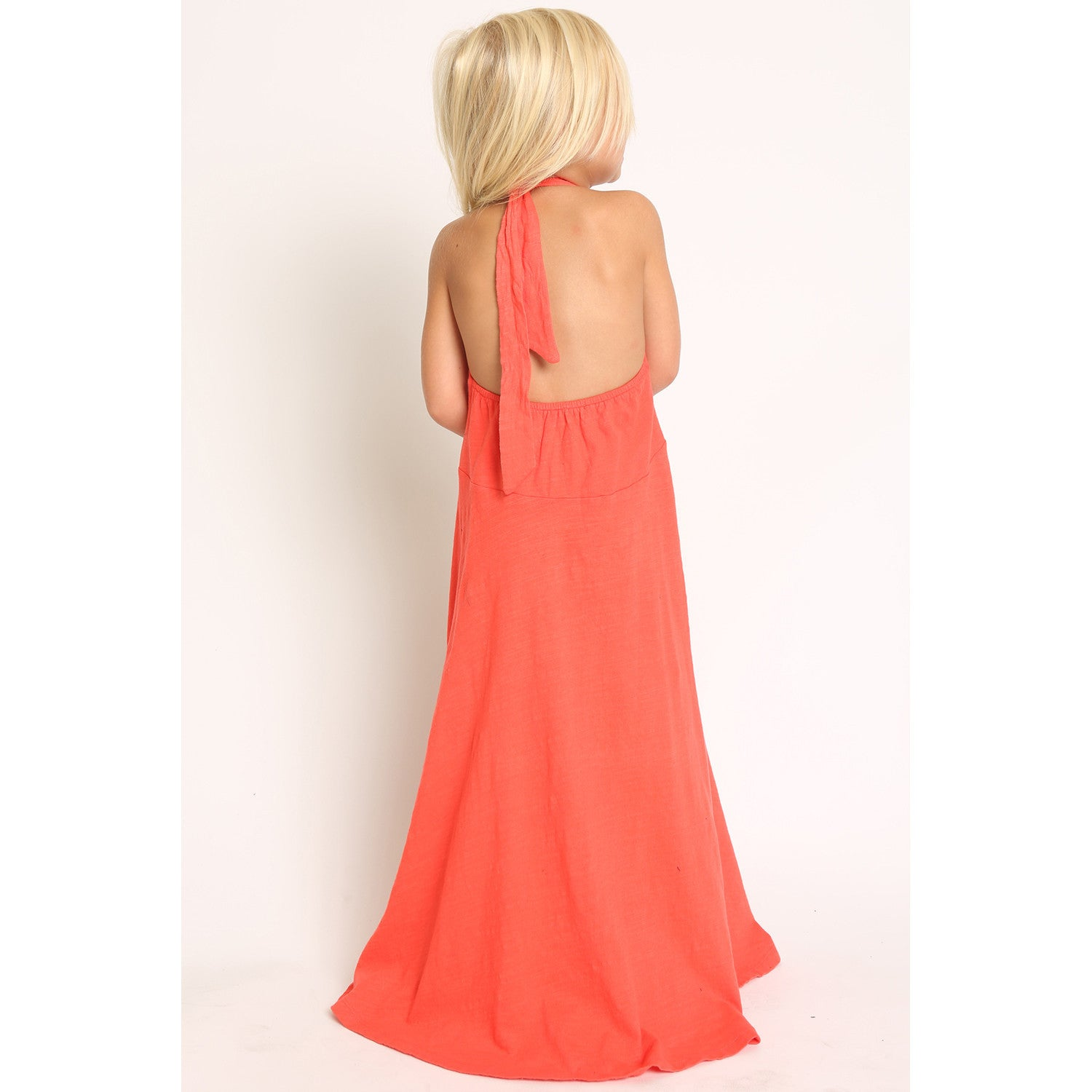 Bird and Floral Embroidery Halter Maxi Dress back view