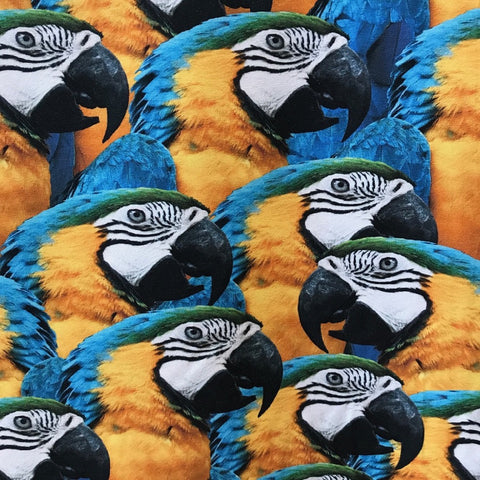 Macaws digital cotton jersey (by the half metre)
