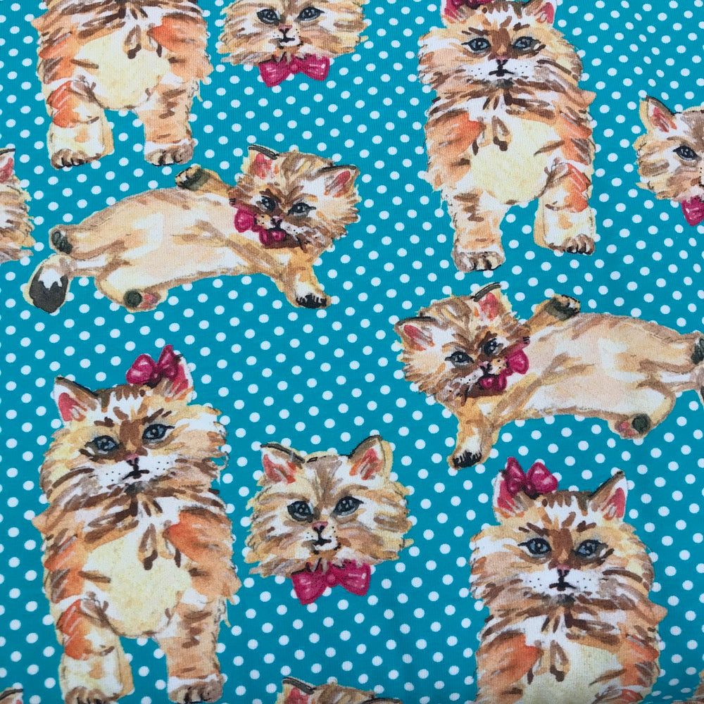 Polka Dot kittens turquoise organic cotton jersey (by the half metre)