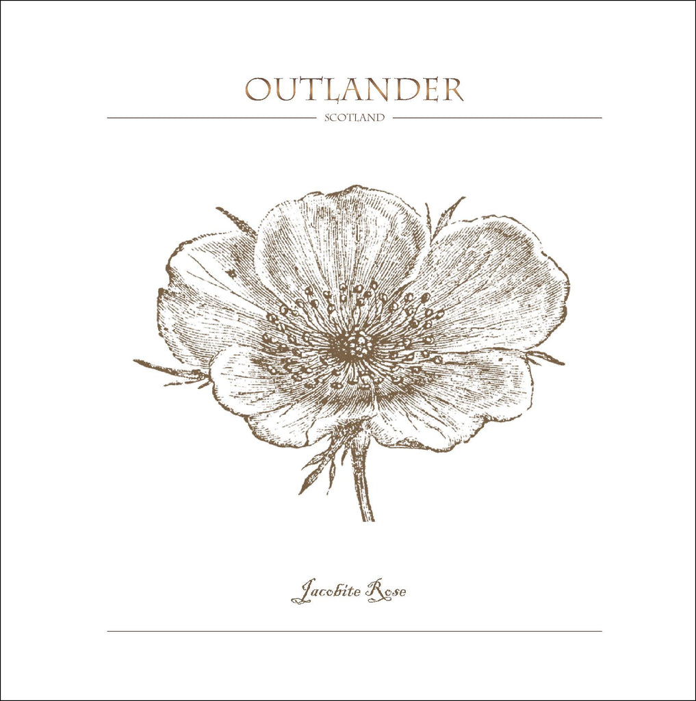 Outlander-inspired greeting card featuring White Scot's Jacobite Rose illustration. Made in Scotland.