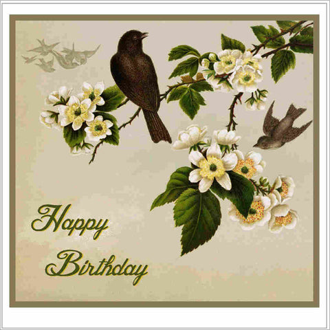 Birthday greeting card with vintage blackbirds and blossom illustration