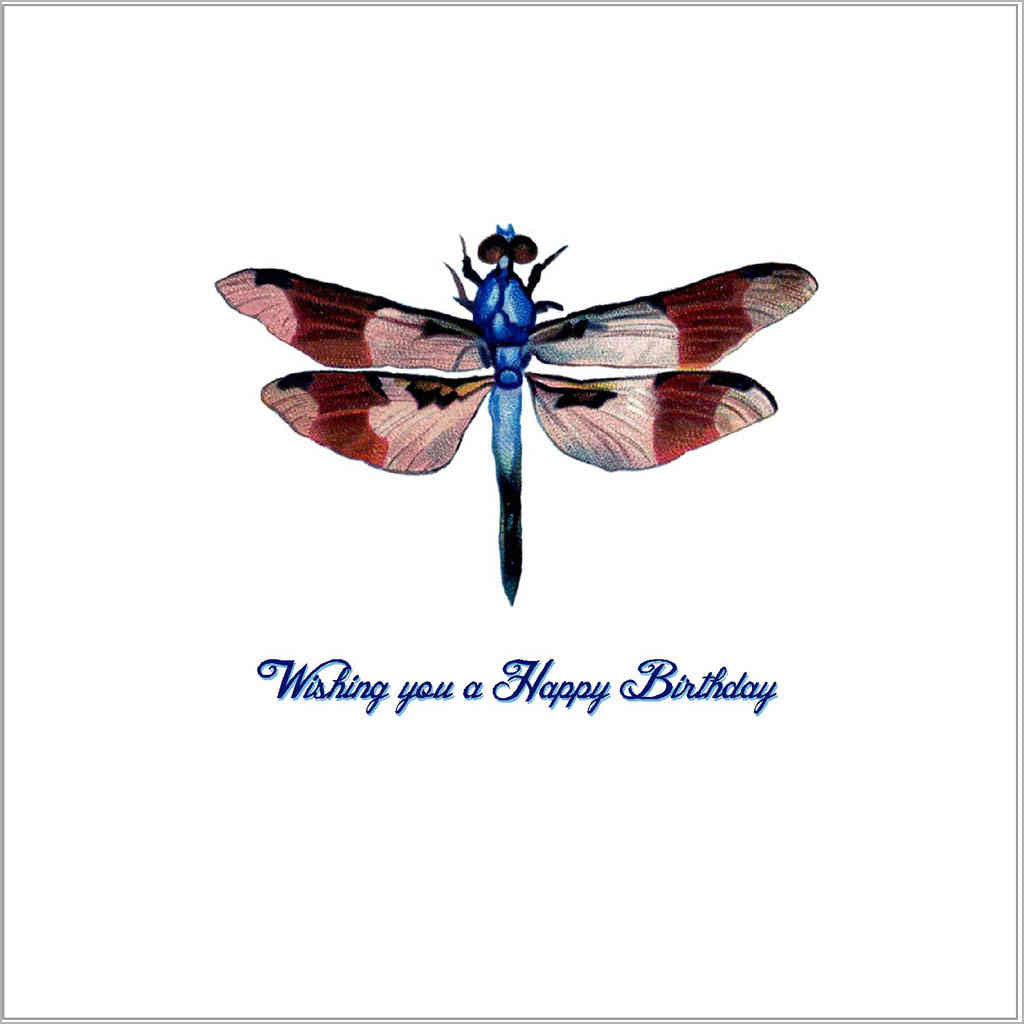 Birthday greeting card with vintage dragonfly illustration