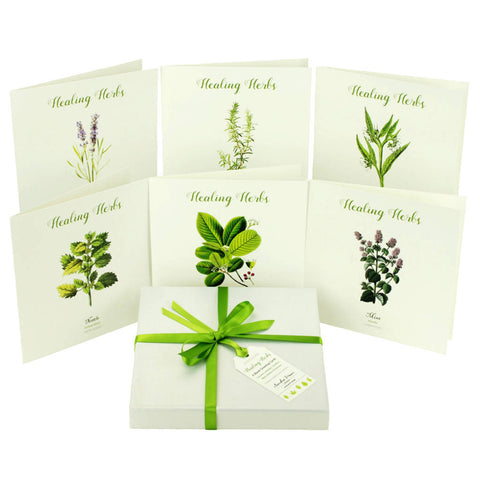 Outlander-inspired healing herb greeting card box set - made in Scotland