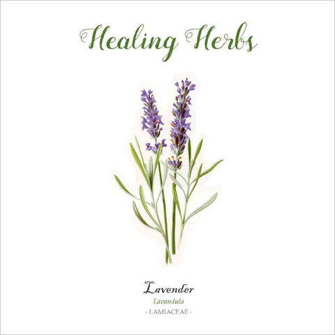 Outlander-inspired Healing Herbs Greeting Card - lavender