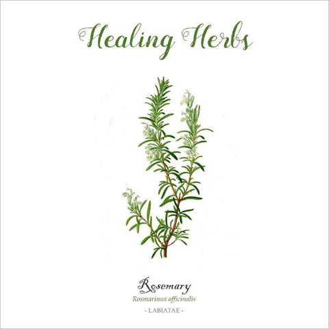 Outlander-inspired Healing Herbs Greeting Card - rosemary