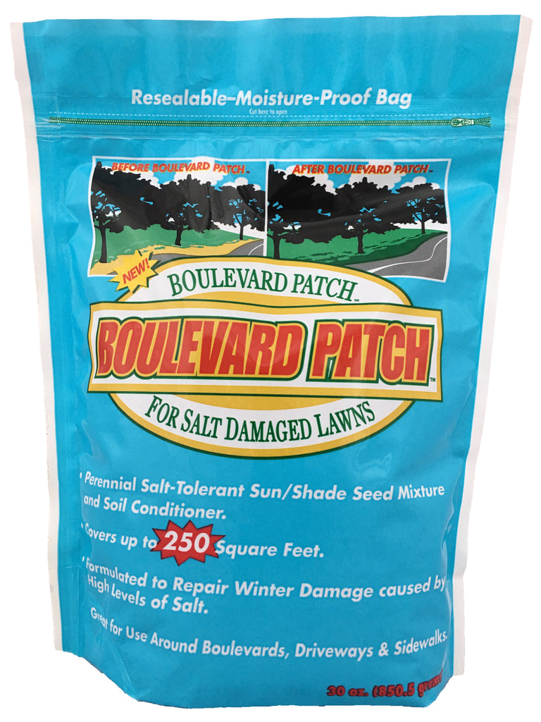 What to do for lawn after salt and deicer damage from winter snow.