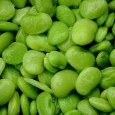 Ford Hook 242 Lima Beans 1# Full Pound From The Dirty Gardener