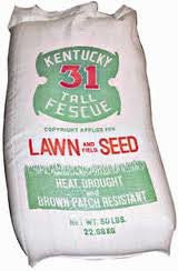 Kentucky 31 Tall Fescue Grass Seed- 25# Bag Ky31