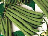 The Dirty Gardener Stringless Green Pod Beans, 1 Pound
