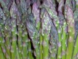 The Dirty Gardener Mary Washington Asparagus, 50+ Seeds