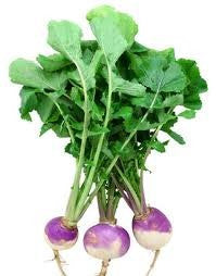The Dirty Gardener Purple Top White Globe Turnips