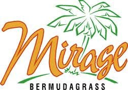 Mirage Bermudagrass Seed 25# From The Dirty Gardener