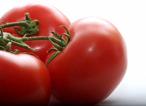 The Dirty Gardener Rutgers Vf Tomato Seeds, 175 Seeds