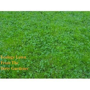 Ecology Lawn Seed- 50# Low Grow- No Mowing