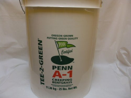 Penn A-1 Creeping Bentgrass Seed 25#