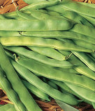 Burpee Roma II Bush Beans - 2 Ounces