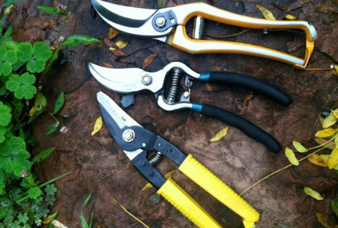 Pruner Combo Pack- 3 of Our Best Selling Pruners (Herb, Flowers, Plants, Roses)